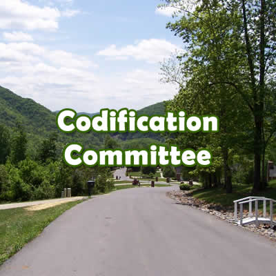Codification Committee